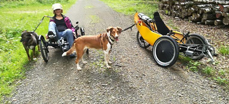Leitra als Wald und Feldfahrzeug mit Hundebegleitung
